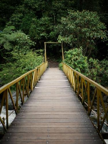 Bridge Mystic